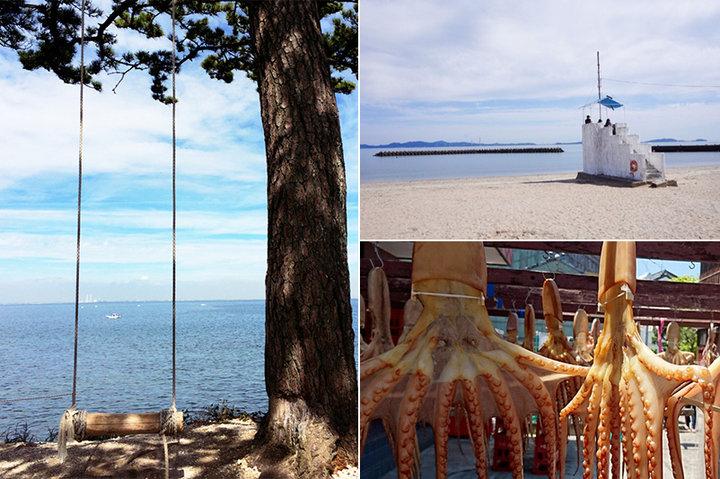 ことりっぷ名古屋からすぐ!絶景「ハイジのブランコ」で有名な日間賀島を日帰りさんぽ