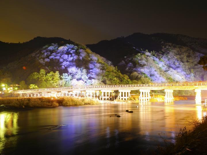 ことりっぷ初冬の嵯峨・嵐山を彩る優美な「灯りと花の路」京都・嵐山花灯路-2013
